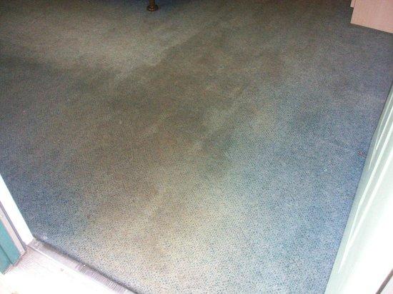 Motel 6 Fayetteville: Entering the room (carpet)