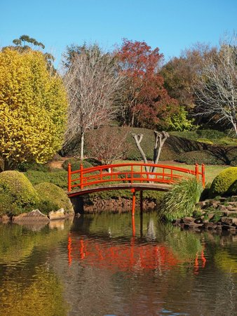 Japanese Garden : Peaceful and tranquil