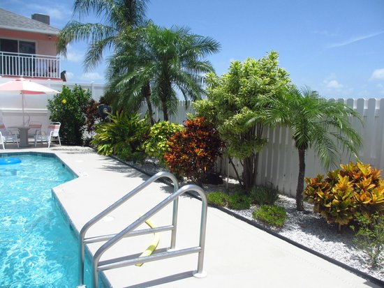 East Shore Resort: pool area