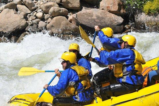 Arkansas Valley Adventures : AVA Rafting Fun