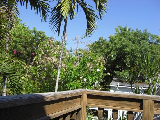 Key West Bed and Breakfast : View from the balcony