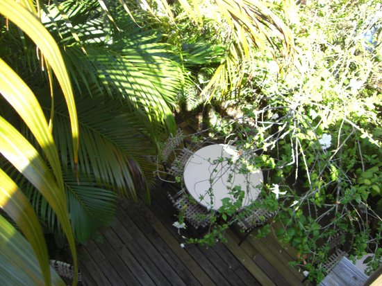 Key West Bed and Breakfast: Patio
