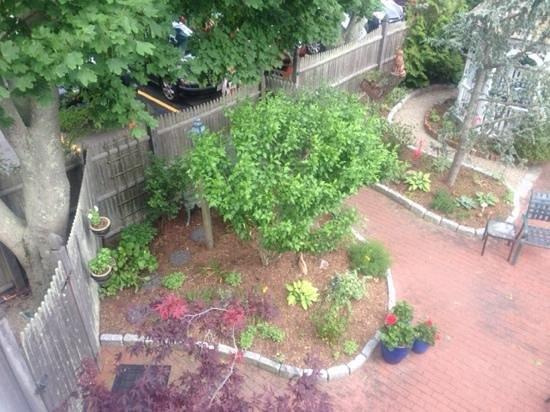 Secret Garden Inn : view of the garden from the upper deck
