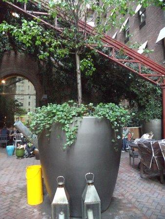 Hudson Hotel New York: Outdoor Area