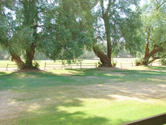 The Ranch at Death Valley: view from our room