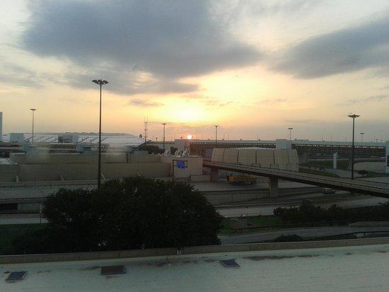 Hyatt Regency DFW: view from our window
