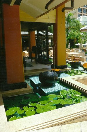 Holiday Inn Resort Phuket: Another of the many pools with waterlilies
