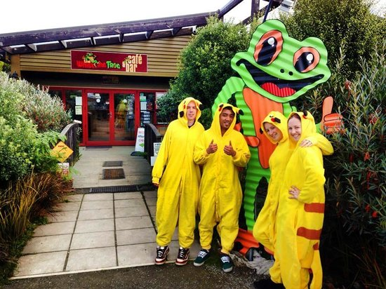 Whistling Frog Cafe & Bar: Team Pikachu stops in at the Frog during their roadtrip