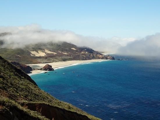 Los Agaves: California