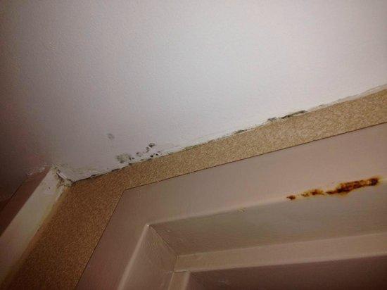 Quality Inn: Black mold in the bathroom- RM 118