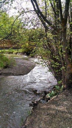 Montpelier Creek KOA