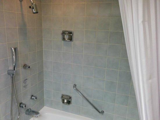 Dai-Ichi Hotel Annex: The shower head on the top don't work