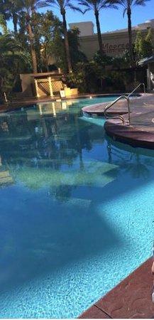 Four Seasons Hotel Las Vegas: Piscina do Four Seasons