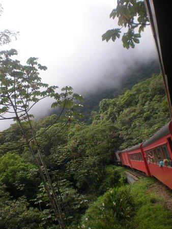 Estrada de Ferro Morretes- Curitiba: pelo caminho