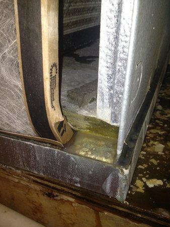 Homewood Suites by Hilton Atlanta - Cumberland / Galleria: Disgusting!