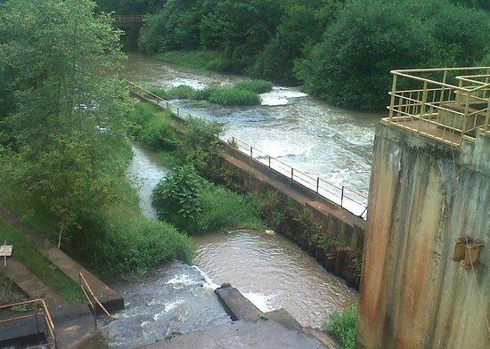 ponte foto de parque ecológico municipal doutor daisaku ikeda