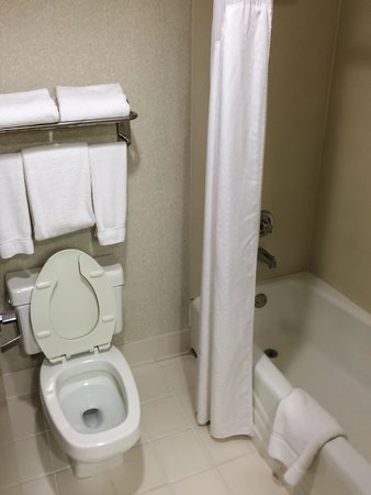 Holiday Inn Express Atlanta-Kennesaw: Small but Clean Bath