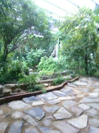 Family Garden Inn 2 Laredo o TripAdvisor