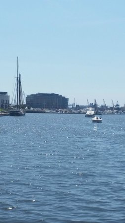 Inner Harbor: Harbor View