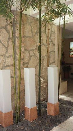 Hotel & Suites Nader: Simple, tasteful decoration