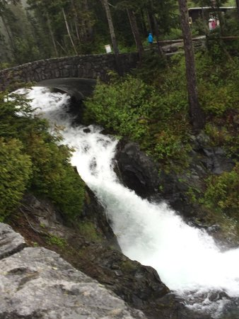 Mount Rainier : Narada waterfall. There is a section of the trail down below that lets you go closer to the wate