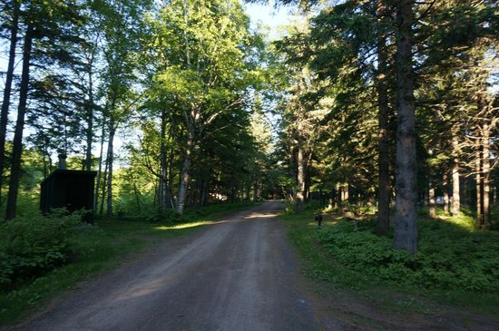 Judge C.R. Magney State Park : Entering the campgrounds