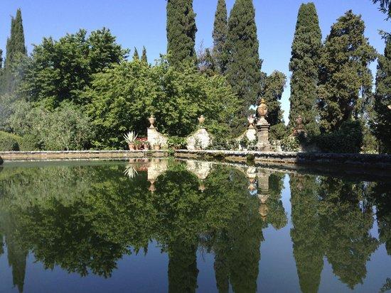Castello di Verrazzano: garden