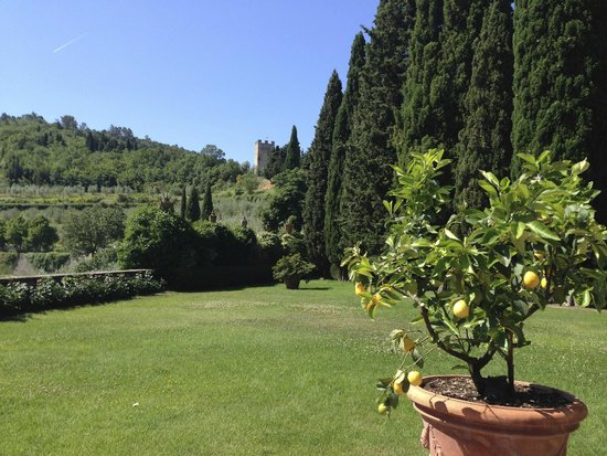 Castello di Verrazzano: view