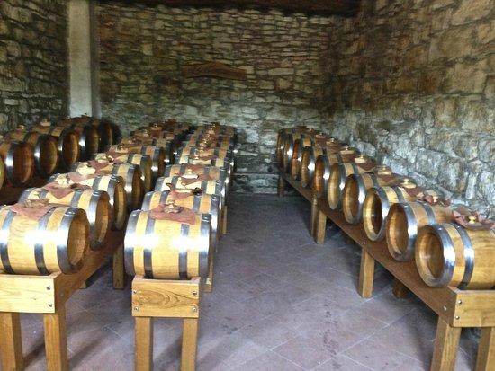 Castello di Verrazzano: cellar