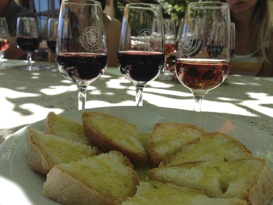 Castello di Verrazzano: wine tasting