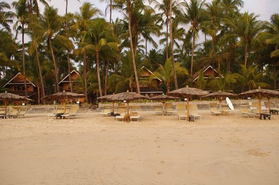 Sandoway Resort: looking back at the beachfront cottages