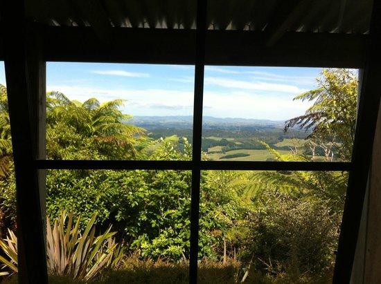 Te Tiro: View from window