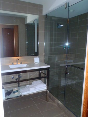 Hyatt Regency McCormick Place: Bathroom