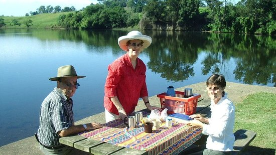 Wingham Foreshore Recreation Reserve: Picnic in the riverside park