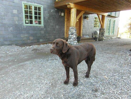 The Lodge at Black Rapids: Rowdy unser Freund