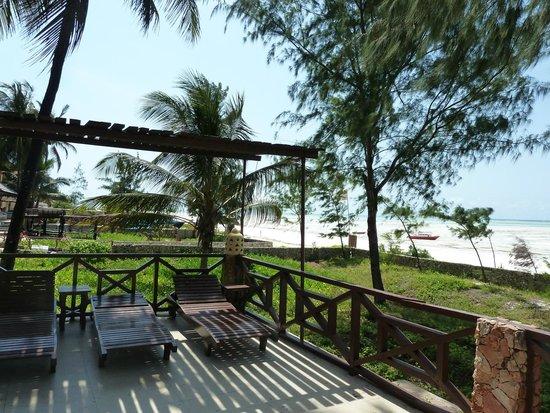 Arabian Nights Hotel: plage de sable blanc et cocotiers...