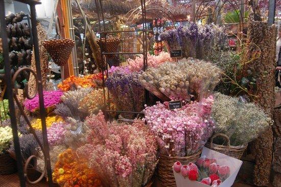 Flower Market / Bloemenmarkt : Сухостой