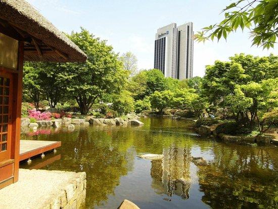Radisson Blu Hotel, Hamburg: Hotelansicht vom Japanischen Garten (Planten und Blomen) aus
