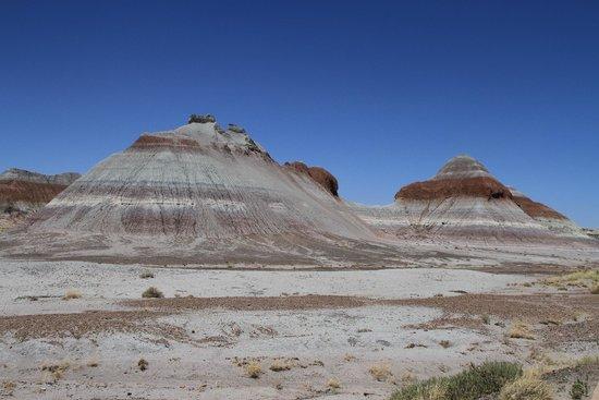 Painted Desert : Quel décor
