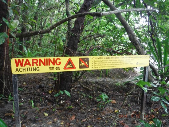 Daintree National Park: Croc sign