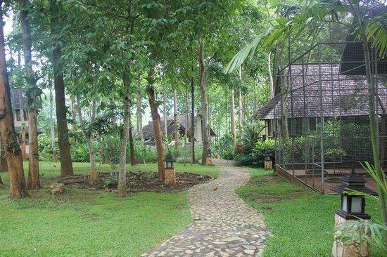 Chiangkham Luang Resort: ทางเดินไปห้องอาหาร