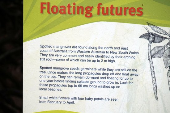 Marrdja Botanical Walk: educational signs
