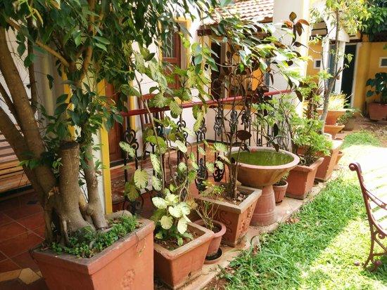 Casa Cottage: Garden area