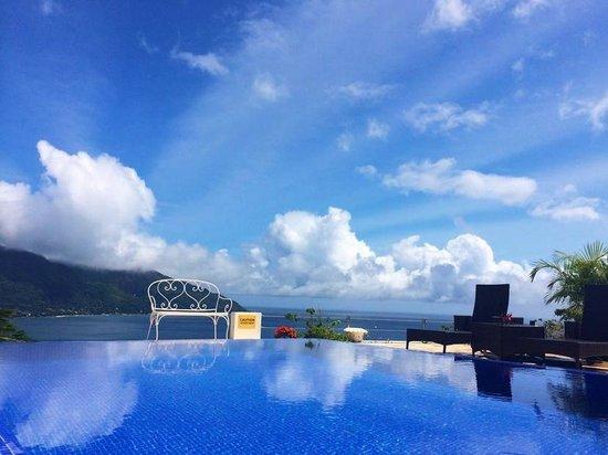Petit Amour Villa: The pool