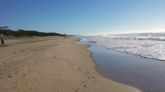 Horizons at Peregian: Peregian Beach towards Noosa Heads