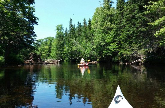 Kingfisher Outdoors : Kayaking on the Morell