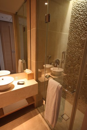 The Westin Resort, Costa Navarino: The extra bathroom