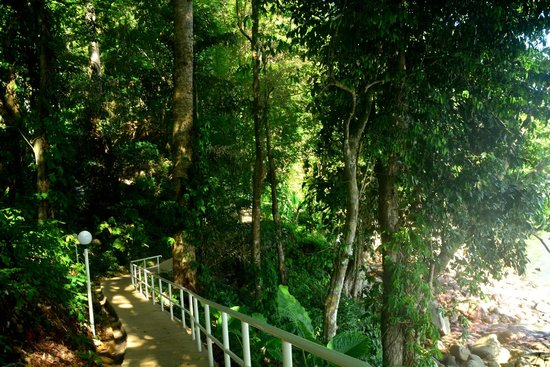 Amari Phuket: Path to the jetty