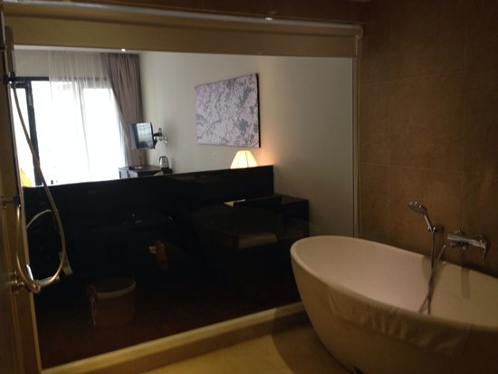 Thanh Binh Riverside Hotel : Massive eggshell bathtub and open shower