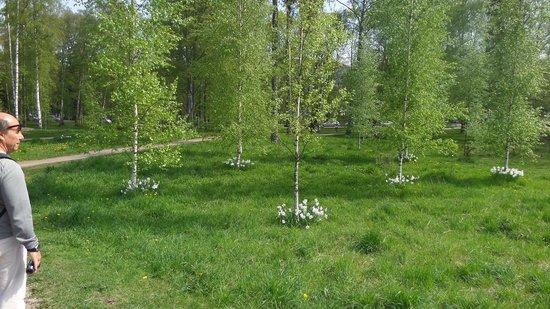 The Sibelius Monument : Parque